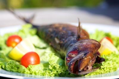 Makrela uzená na grilu