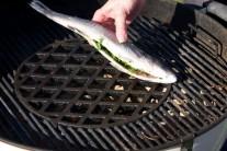 Rozpálíme si gril a rybu položíme na rošt.