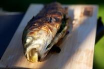 Pro lepší chuť můžeme k rybě přidat plátky citronu a jako přílohu čerstvé pečivo.
