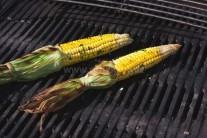 Kukuřičné klasy grilujeme přibližně 12-15 minut.