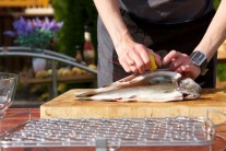 Ryby nakupujeme nejlépe ve specializovaných prodejnách nebo přímo na sádkách, tak máme jistotu, že ryby jsou opravdu čerstvé a tudíž i s výbornou chutí.