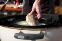 Ryby patří do skupiny zdraví prospěšných potravin. Jejich konzumace by měla být alespoň 1 - 2 x týdně. Rybí maso je velmi lehce stravitelné a jeho nespornou výhodou je i poměrně krátká doba tepelné úpravy.