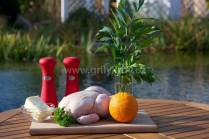 Na grilované kuře s libečkem si připravíme kuře, větší pomeranč, čerstvý sekaný libeček, máslo, pivo nebo vývar do stojanu na drůbež,  sůl a pepř. Mimo jiné potřebujeme provázek a stojan na grillování drůbeže. My jsme měli k dispozici stojan na drůbež Web