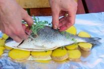 Na rozložené brambory položíme celou rybu. Na rybu položíme ještě po snítce rozmarýnu a tymiánu. Bylinky pěkně provoní rybu i brambory.